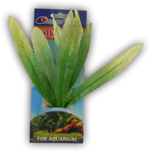 Rastlina