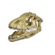 Dekorácia kostra dinosaura